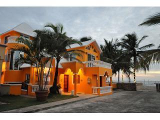 Viilla  Leone Greets the Spectacular Sunrise - Stunning Oceanfront 5 Bedroom Villa Cabarete - Cabarete - rentals
