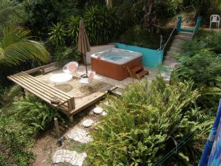 beautiful jacuzzi surrounded by vegetation and a spectacular view - Birdnestudios - Gaviota unit, comfort and a view - Isla de Vieques - rentals