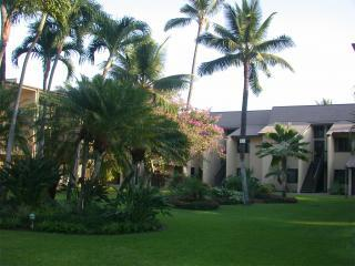 Kihei Garden Estates - AUGUST '15 $79/NT!-Great Maui Condo,Steps to Beach - Kihei - rentals