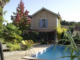 IN SARLAT+POOL+PARKING+WIFI+WALK TO MARKETS+CAFES - Dordogne Region vacation rentals