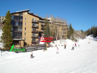 Storm Meadows East Slopeside:  True Ski-in/out. - Steamboat Springs vacation rentals