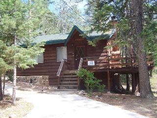 Grizzly Bear - Big Bear Area vacation rentals