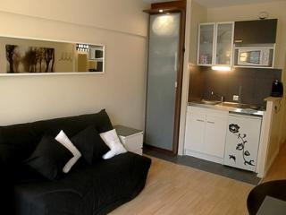Cute studio in the Champs Elysees area-2 people (A - 3rd Arrondissement Temple vacation rentals