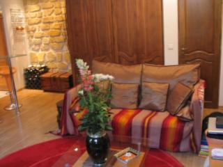 IMG 6767 - Comfortable Condo 1BR terrace PARIS (Rue Amelot - - Paris - rentals