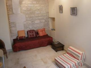 Great Studio Apartment at Rue du Cardinal Lemoine - Paris vacation rentals