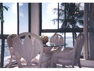 Corner Window View from Dining Room - Kuhio Shores #314 & 315: Perfect Beachfront Condos - Poipu - rentals