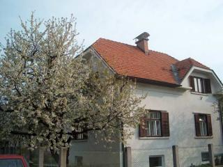 Perfect location, free WiFi, garden & parking - Ljubljana vacation rentals