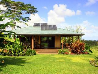 OCEANview 6acres Secluded rainforest & vast garden - Pahoa vacation rentals