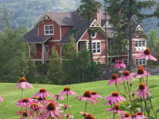 Tremblant - ski / golf condo with spectacular view - La Conception vacation rentals