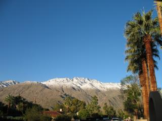 Views of the Mountains - New Low Prices 5 Bed 3 Bath Private Home w/Pool/HT - Palm Springs - rentals