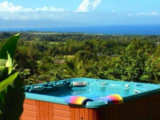 Maui Tradewinds Honeymoon/Vacation Suite - Haiku vacation rentals