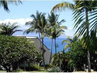 Newly Remodeled Oceanview 1 BR Maui Kamaole condo - Kihei vacation rentals