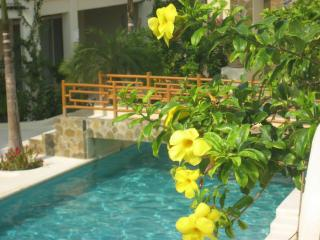 Casa  Anita Luxury Tropical Paradise, Ocean Beach - Huatulco vacation rentals