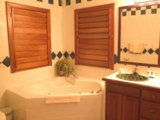 C2 - Belize Cayes vacation rentals