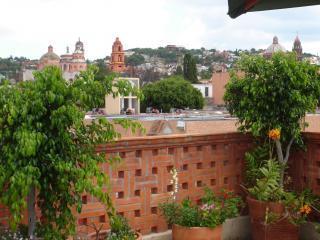 View from terrace - Casa De Las Divas - San Miguel de Allende - rentals
