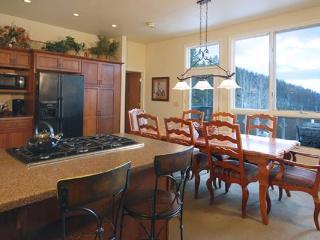 Scandinavian Lodge and Condominiums - SL300 - Steamboat Springs vacation rentals
