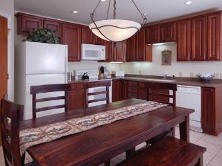 Scandinavian Lodge and Condominiums - SL302 - Steamboat Springs vacation rentals