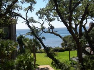 View from the Balcony - Beautiful large condo - Great Ocean View - Saint Simons Island - rentals