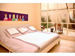 Luxury Apt. w/22 ft ceilings,Pvt Garden & Fire Pit - Buenos Aires vacation rentals