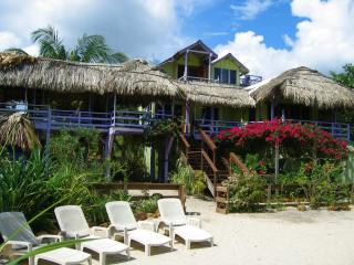 Casa Beya: Colorful, private BEACHhouse: DOCK,WIFI - Placencia vacation rentals