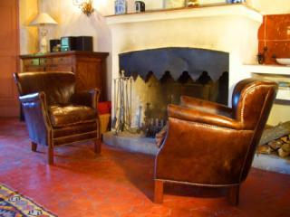 Maison Mimosa - Boutique 17th Century holiday let - Flayosc vacation rentals