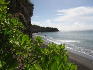 SECLUSION IN NATURE, ON A NEVIS COVE - Turtle Beach vacation rentals