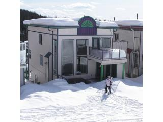 Ski-in/Ski-out - 4bdr/3bath - Silver Star Resort - Silver Star Mountain vacation rentals