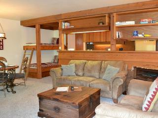 Larkspur 1212 - Teton Village vacation rentals