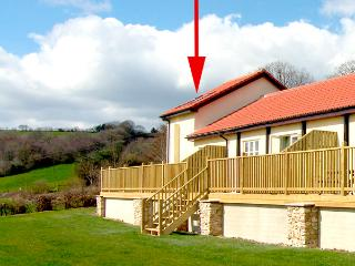 STARGAZER, pet friendly, country holiday cottage, with a garden in Upottery, Ref 2214 - Bridport vacation rentals