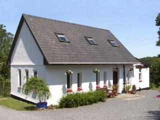 BARN OWL COTTAGE, character holiday cottage, with a garden in Carmarthen, Ref 3500 - Carmarthen vacation rentals