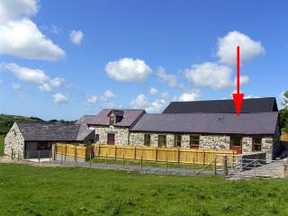 BWYTHYN-Y-SAER, country holiday cottage, with a garden in Abersoch, Ref 2914 - Garndolbenmaen vacation rentals