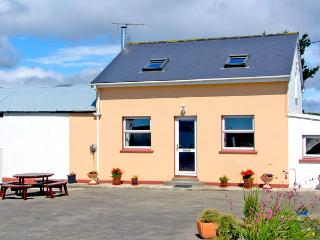 OCEAN VIEW, pet friendly, country holiday cottage, with a garden in Skibbereen, County Cork, Ref 2519 - Dunmanway vacation rentals