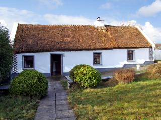 THE THATCHED COTTAGE, pet friendly, character holiday cottage, with a garden in Drummin Near Westport, County Mayo, Ref 2869 - County Mayo vacation rentals