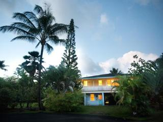 Hanalei 3 bedroom  house ....a walk to the beach! - Hanalei vacation rentals