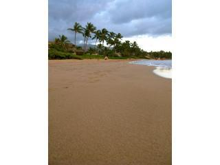 Top Rated OceanVU2bdrm, Aug/Sept 7+ $135/nt promo! - Kihei vacation rentals