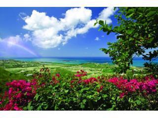 Villa GC-View & Bougainvillea - Villa des Great Chefs - Beautiful and private! - Christiansted - rentals