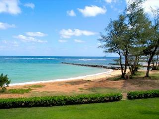 Oceanfront air-conditioned and newly remodeled.   Perfect for whale-watching! - Kapaa vacation rentals