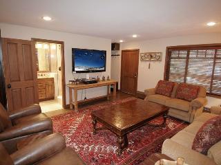 Fasching Haus Unit 250 - Aspen vacation rentals