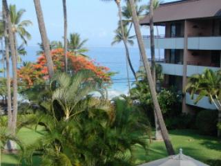 70 steps to Boogie Board and Snorkeling 2BR/2BA - Keauhou vacation rentals