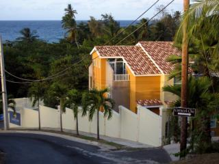 Landing View villas - Beautiful Villa at Sandy Beach, Rincon - Rincon - rentals