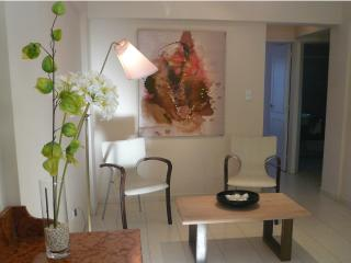 CHARMING FURNISHED APARTMENT, EXCELLENT LOCATION! - Bialet Masse vacation rentals