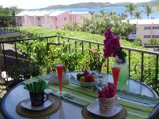 Sea Side Studio - Saint Thomas vacation rentals