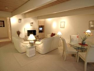 Chateau Chuamont Unit 9 - Aspen vacation rentals