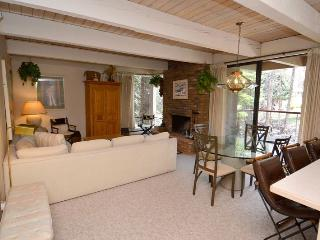 Chateau Eau Claire Unit 21 - Northwest Colorado vacation rentals