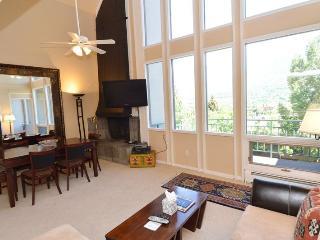 Fifht Avenue Unit 306 - Aspen vacation rentals