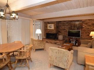 Chateau Roaring Fork Unit 37 - Aspen vacation rentals