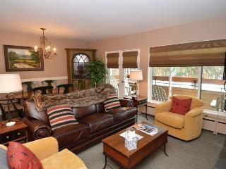 Fasching Haus Unit 180 - Aspen vacation rentals