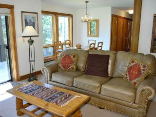 Nez Perce B3 - Teton Village vacation rentals