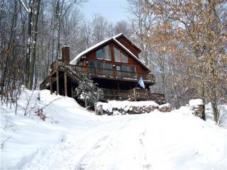 Canaan Valley 3 bedroom chalet - Canaan Valley vacation rentals