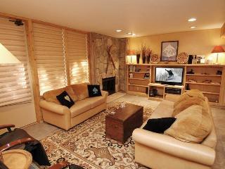 Fifth Aveune Unit 9 - Aspen vacation rentals